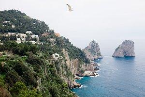 Oh Capri
