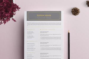 Professional Resume / CV Template-10