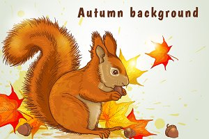 Autumn background with squirrel