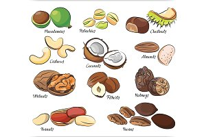 Collection of different nuts