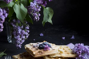 Vegan crispy waffles with blueberries on the dark background
