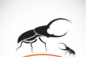 Vector image of an beetle
