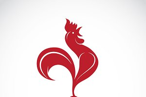 Vector image of an cock design