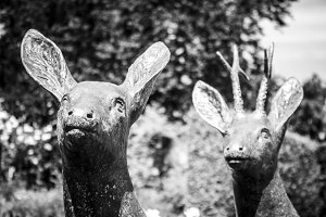 Sculpture of 2 Deer