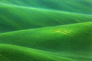 landscape with green fields