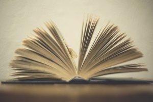 Delicate Book