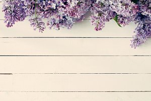 Lilac flowers on vintage background
