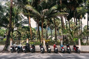 Line of scooters parked on a road near palm trees in Phuket. Thailand.