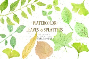 22 watercolor leaves set