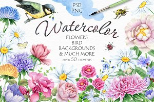 30% OFF! Watercolor Flowers and Bird