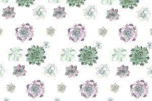 Watercolor succulent pattern