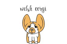 Dog isolated. Funny. Welsh Corgi
