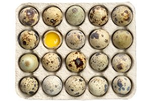 Quail eggs in paper tray