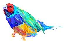Bird (vector illustration)