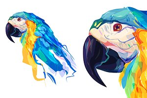Parrot  (Birds set. Vector)