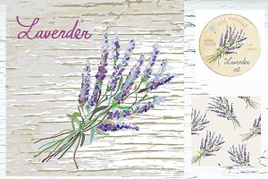 Lavender design set - vectors