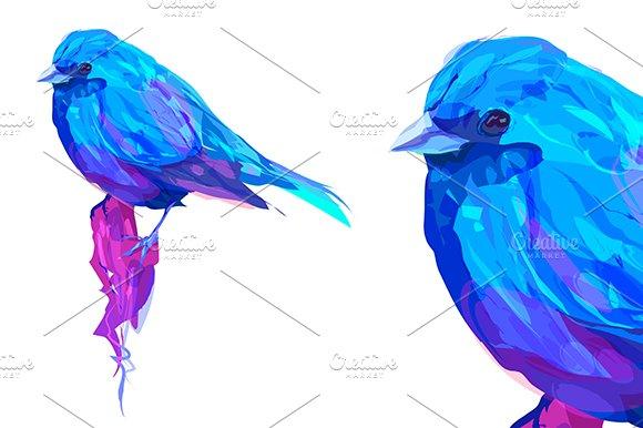 Exotic Bird (Vector)