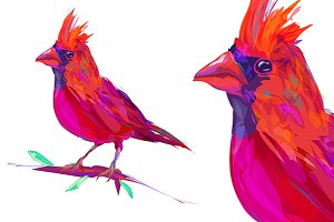 Red Cardinal (Birds set. Vector)