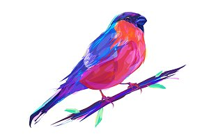 Bullfinch (Birds set. Vector)
