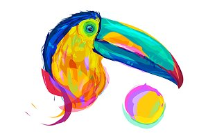 Toucan  (Birds set. Vector)