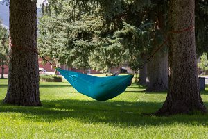 Large person reading book in Hammock