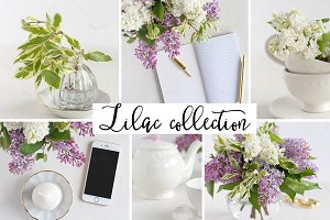 Lilac styled stock photography