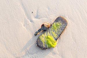 Old slipper on beach