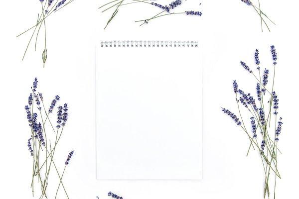 Lavender flowers Empty sketchbook