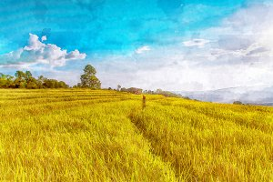 rice field watercolor effect