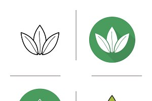 Green tea leaves icons. Vector