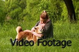 Girl hugging and pats dog Shiba Inu