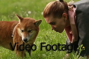 Girl playing with dog Shiba Inu