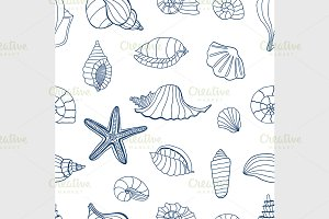 Sea shells. Blue and white