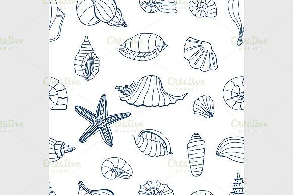 Sea shells. Blue and white - Graphics