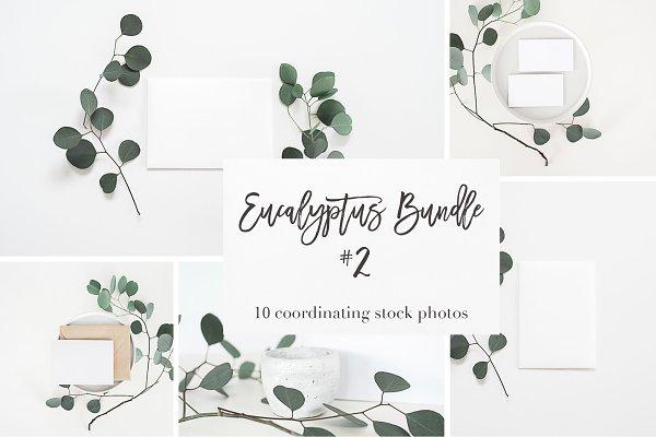styled stock bundle