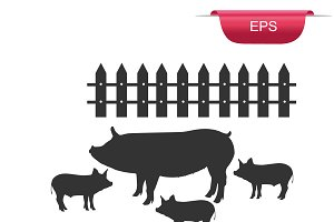 pig, pork, meat, design element