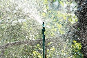Sprinkle watering