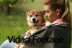 Girl holds on hands dog Shiba Inu