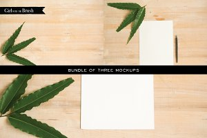 Natural Leaf and Wood Mockups Bundle