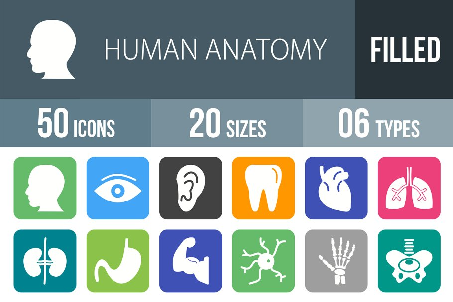 50 Human Anatomy Filled Icons