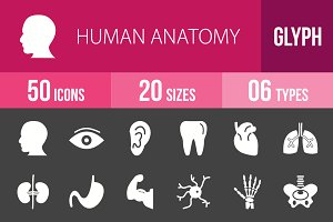 50 Human Anatomy Glyph Inverted Icon