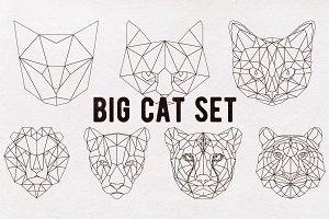 Big cat set