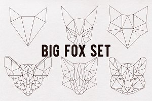 Big fox set