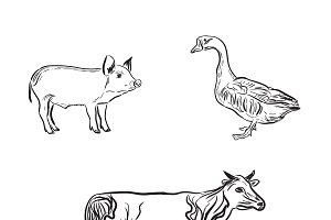 farm animals, sketch style, vector