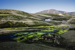 Landscape with moss in Iceland