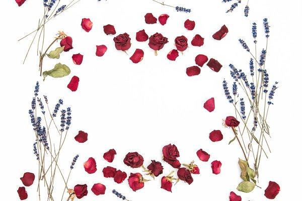 Floral frame. Roses lavender