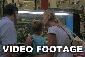 Family watching aquarium