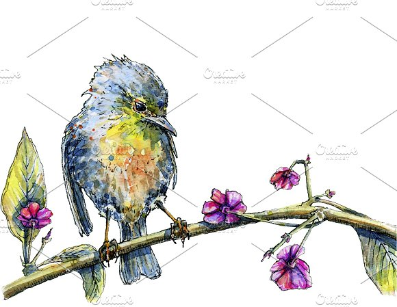 Watercolor bird sitting on a tree in Illustrations - product preview 1