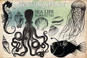 Hand Drawn Ocean Life Clipart