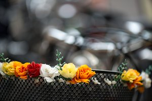 Lost Basket Flowers